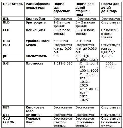 нормы эритроцитов