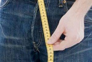 От чего зависит размер члена